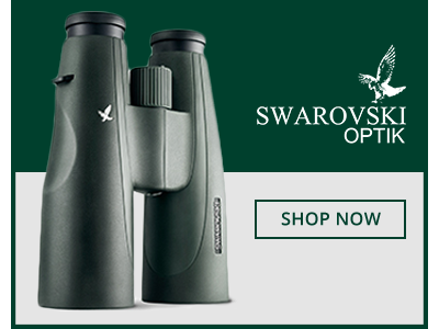 Swarovsk Optik