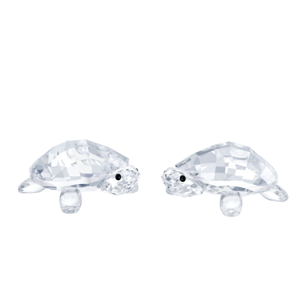 Swarovski Collections Baby Tortoises
