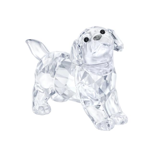 Swarovski Collections Labrador Puppy, Standing
