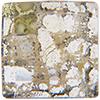 Swarovski 2493 Chessboard Flat Back Crystal Gold Patina 10mm