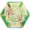 Swarovski 4681 Vision Hexagon Fancy Stone Crystal Luminous Green 14mm