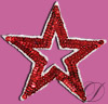 Sequin Star Applique