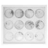 Swarovski Crystals Nail Art Starter Kit - White Tray 12 Jars