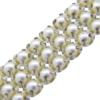 Metal Set Pearl Banding 3 Row