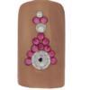 Bling for Nails Vive la Rose Nail Design Kit (For 2 Nails)