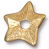 TierraCast® Gold Plated Rivetable Star